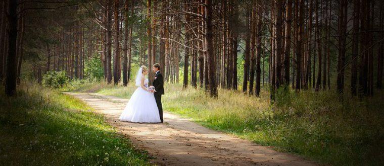 מארגנים חתונה בטבע – הצ'קליסט המלא